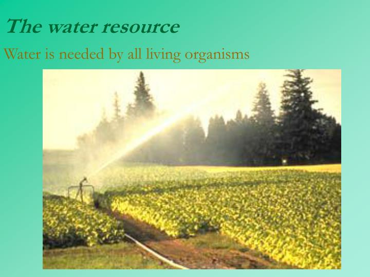 The water resource water is needed by all living organisms