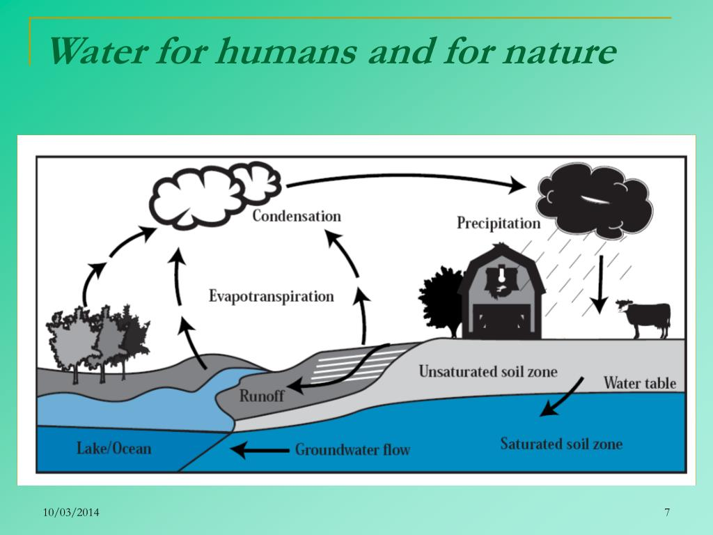 Water for humans and for nature