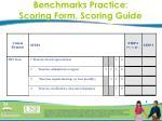 benchmarks practice scoring form scoring guide