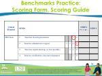 benchmarks practice scoring form scoring guide1