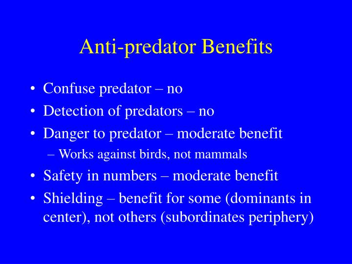 Anti predator benefits