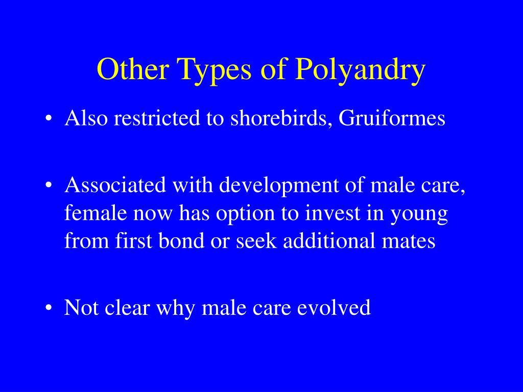 Other Types of Polyandry