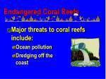 endangered coral reefs