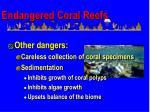 endangered coral reefs64