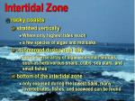 intertidal zone29