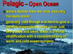 pelagic open ocean