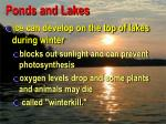 ponds and lakes12