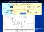 co 2 reactions and buffering in animal body