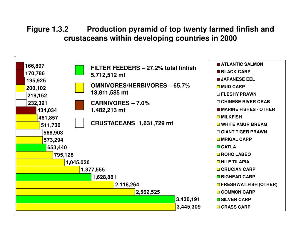 Figure 1.3.2	Production pyramid of top twenty farmed finfish and crustaceans within developing countries in 2000