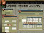 database template data entry