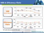 nim efficiency ratio