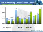 non performing loans gross loans