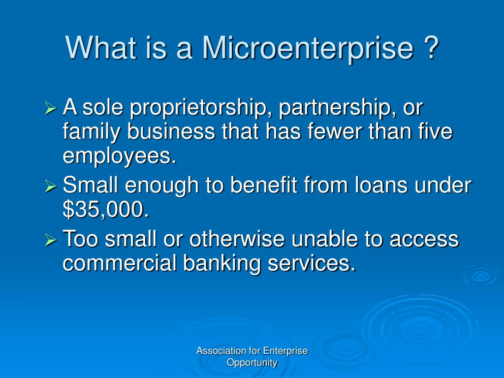 What is a Microenterprise ?
