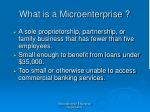 what is a microenterprise