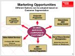 marketing opportunities different options can be adopted based on customer segmentation