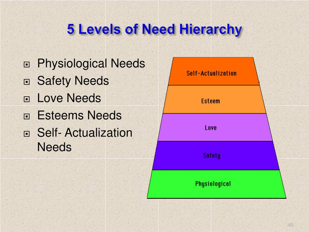 5 Levels of Need Hierarchy