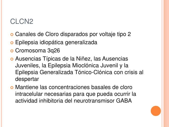 CLCN2