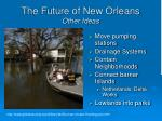 the future of new orleans other ideas