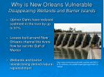 why is new orleans vulnerable disappearing wetlands and barrier islands15