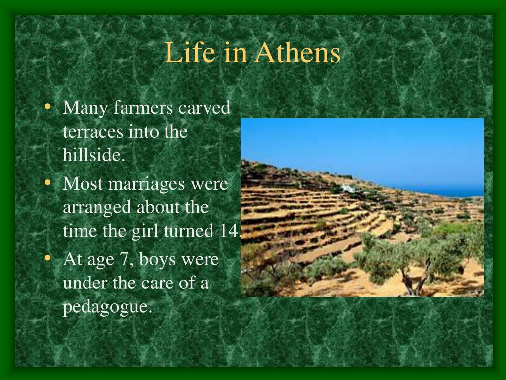 Many farmers carved terraces into the hillside.