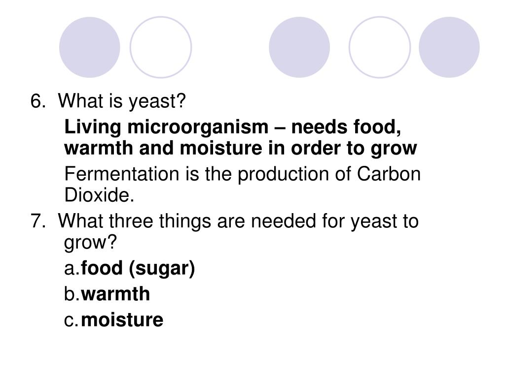 6.  What is yeast?