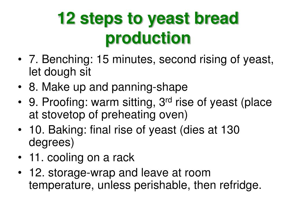 12 steps to yeast bread production