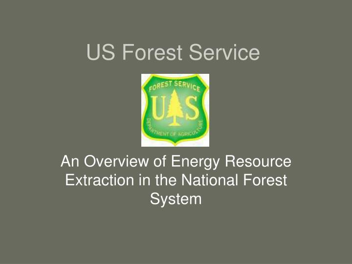 us forest service n.