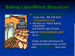 baking labs wheat resources