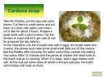cardone soup23