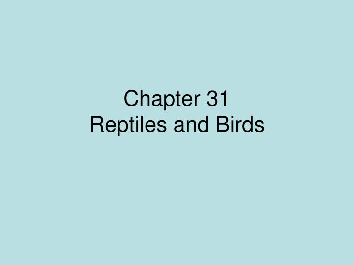 chapter 31 reptiles and birds n.