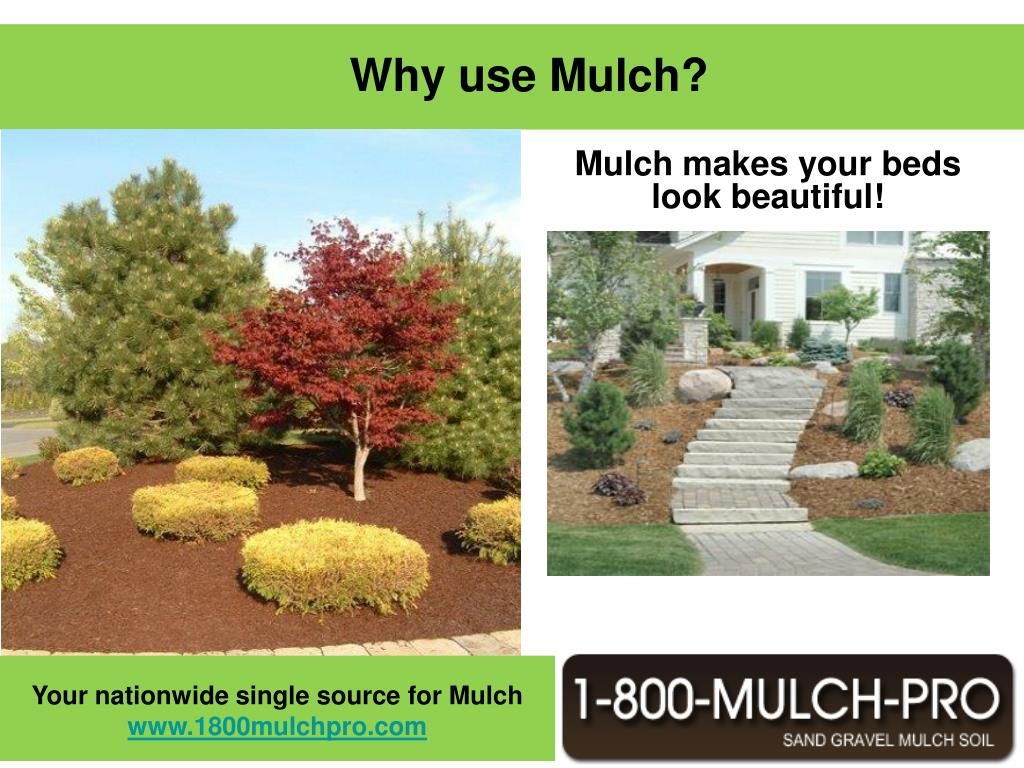 Mulch makes your beds look beautiful!