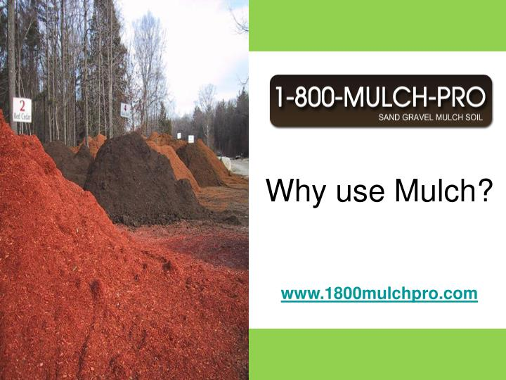 Why use mulch