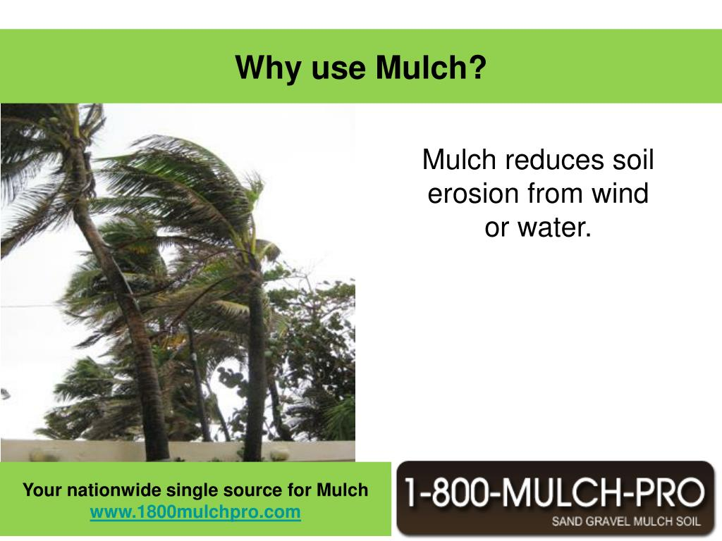 Why use Mulch?