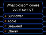 what blossom comes out in spring