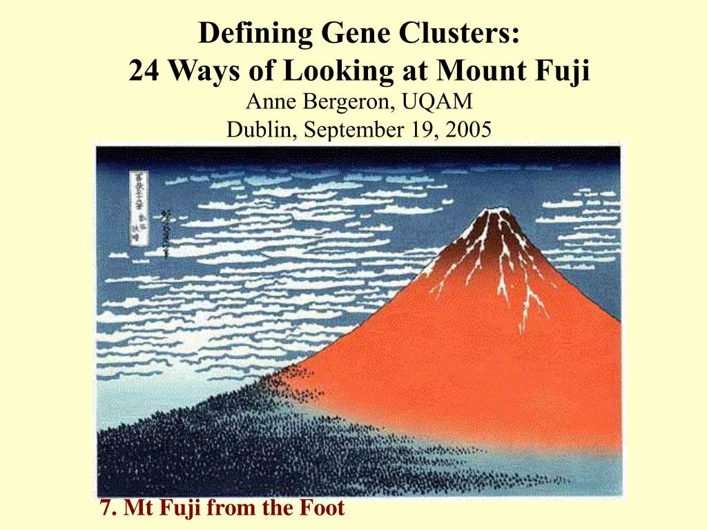 defining gene clusters 24 ways of looking at mount fuji l.