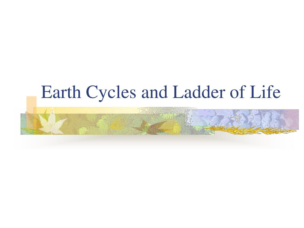 earth cycles and ladder of life l.