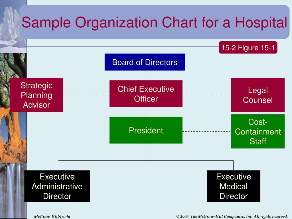 Sample Organization Chart for a Hospital