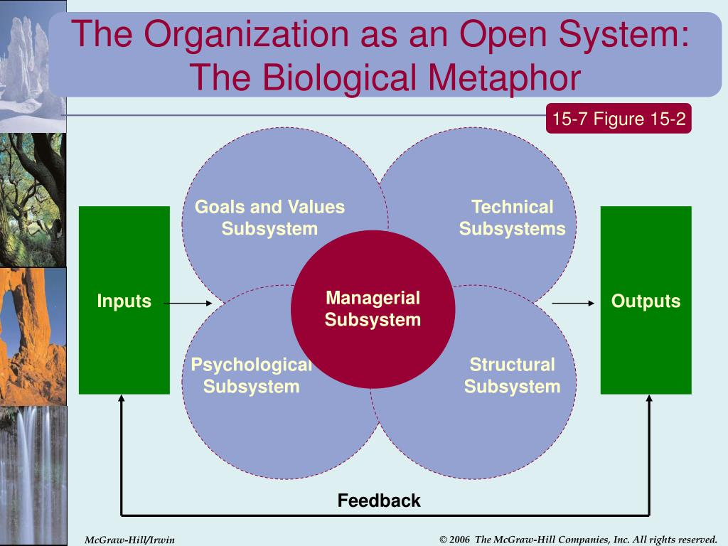 The Organization as an Open System: