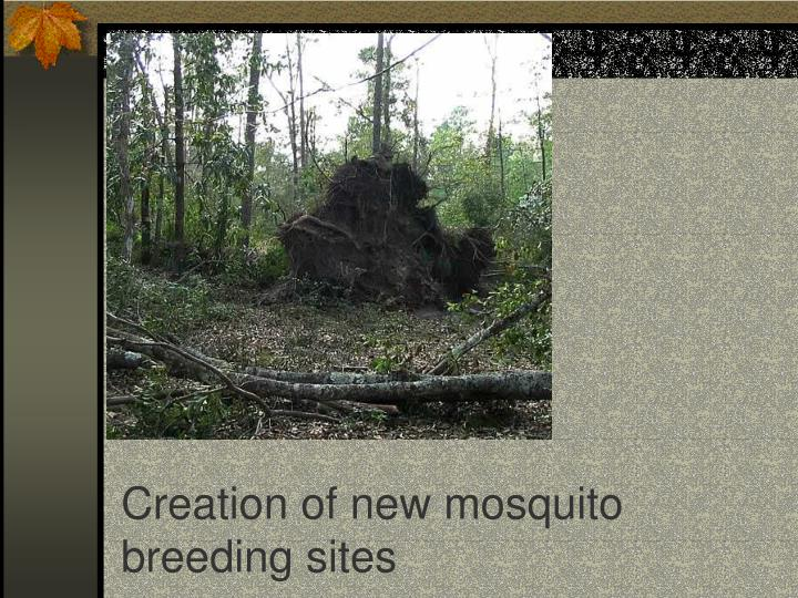 Creation of new mosquito breeding sites