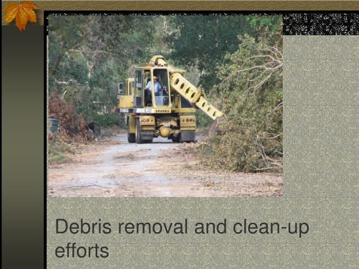 Debris removal and clean-up efforts