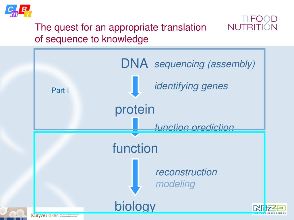 The quest for an appropriate translation of sequence to knowledge