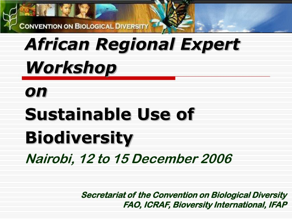african regional expert workshop on sustainable use of biodiversity nairobi 12 to 15 december 2006 l.