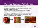 polymer example polyethylene