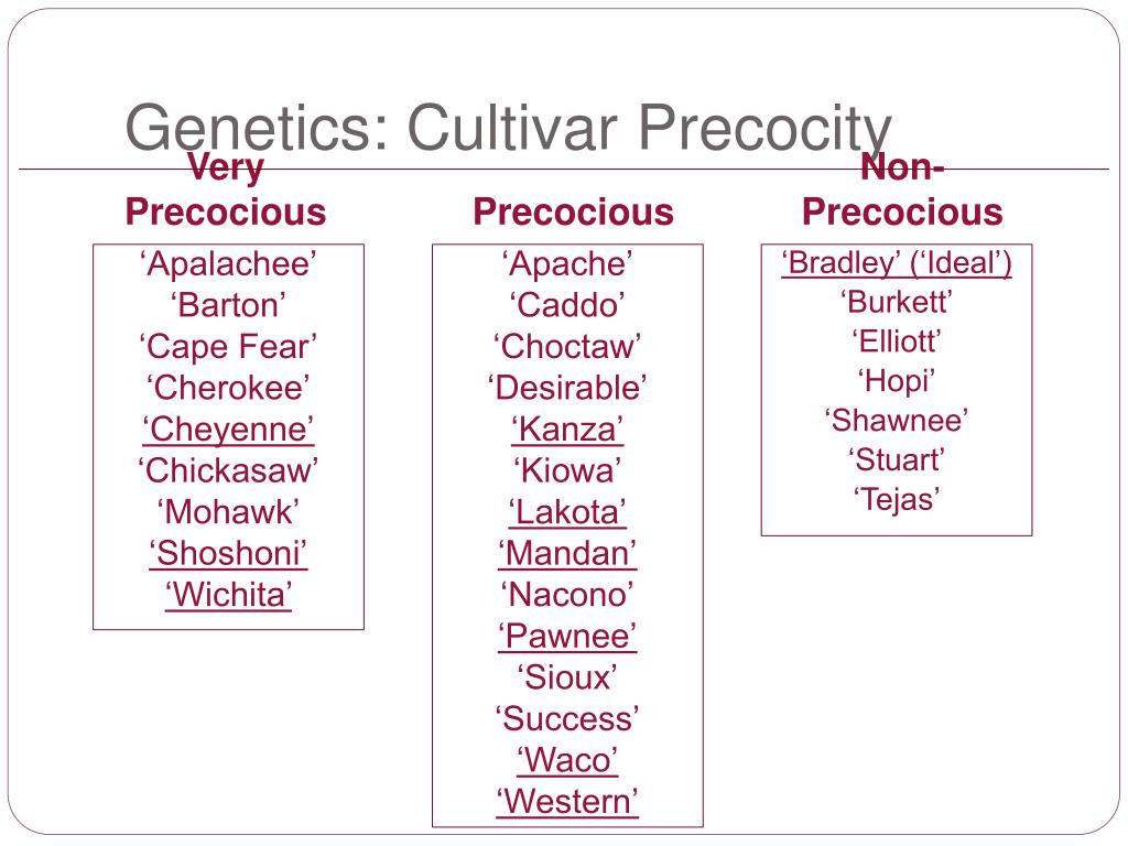 Genetics: Cultivar Precocity