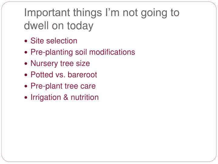 Important things i m not going to dwell on today