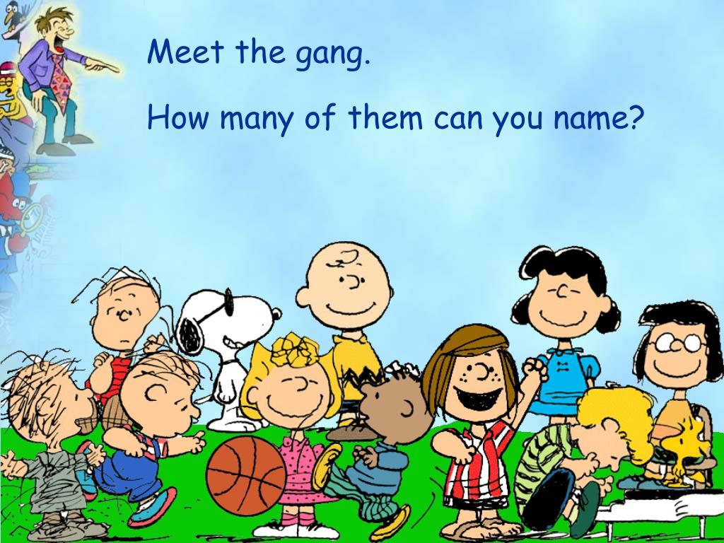 Meet the gang.