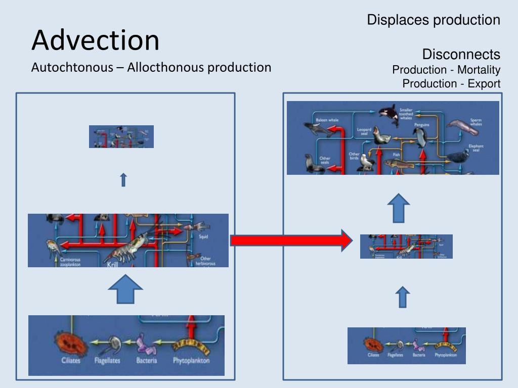 Displaces production