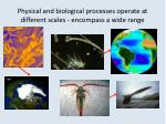 physical and biological processes operate at different scales encompass a wide range