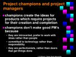 project champions and project managers