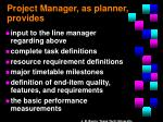 project manager as planner provides